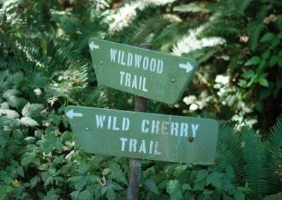 Wildwood-Trail-Sign